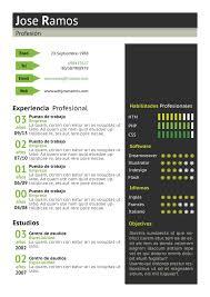 Nuevos Formatos De Curriculum Rafael Pereira
