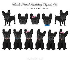 Find high quality bulldog clipart, all png clipart images with transparent backgroud can be download for free! Bulldog Clipart French Bulldog Bulldog French Bulldog Transparent Free For Download On Webstockreview 2020