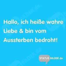 Status Sprüche Wahre Liebe Top 200 Sprüche über Freundschaft 2019