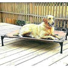 beds outdoor pet beds outside dog image 0 for large dogs best golden retrievers waterproof