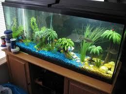 fish tank lighting ideas. Tropical Outdoor Fish Tank Ideas Lighting N