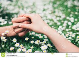 Lovers Holding Hands On Spring Flowers Field Stock Image Image Of