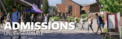 Ph D  Admissions Overview   Information School   University of     Buy Original Essays online job seeker personal statement examples Best Paid  Accounting Resume Sales Accountant Lewesmr Personal Summary Examples resume