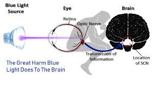 Blue Light Effect On Brain How Does Blue Light Affect Your Brain Iristech