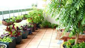 herb garden patio balcony pots small ideas