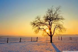 Winter Sunset Ultra HD Desktop ...