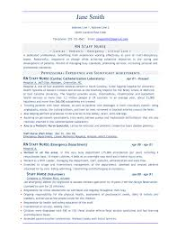 Examples Of Resumes Resume Formats Jobscan In Professional