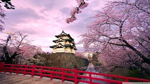 Japanese HD Wallpapers - Top Free ...