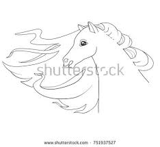 horse head page for coloring book hand drawn vector ilration