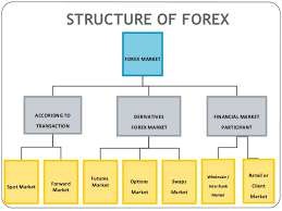 Best Forex Prediction Software Foreign Currency Market
