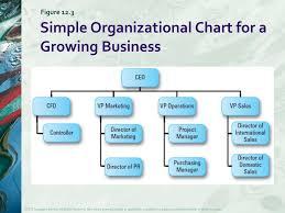 Ppt Designing An Entrepreneurial Organization Powerpoint