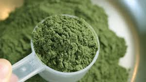 Global Water Soluble Fertilizer Market Size Analysis Report 2026