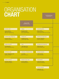 Organisation Chart Singapore Technologies Engineering