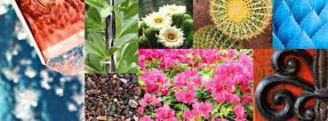 Small Picture Vegetable Gardening Southwest Gardener