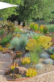 baroque blue oat grass vogue san francisco contemporary landscape innovative designs with chartreuse foliage garden lighting