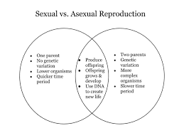 Venn Diagram Of Asexual And Sexual Reproduction Resume