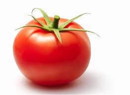 Tomato – THE BLOGRATOR MEDIA