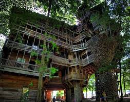 Treehouse Designs Free TEDX Decors Amazing Tree house Designs