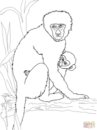 Small Picture Vervet Monkey with Its Baby coloring page Free Printable