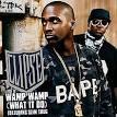 Wamp Wamp (What It Do)