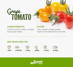 The Complete Guide To Every Type Of Tomato Naturefresh Farms