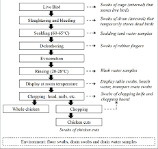 Poultry Feed Chart Flow Diagram Of Poultry Processing In Wet Markets With