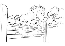 Kleurplaat Amika En Haar Paard Merel Studio100 1818