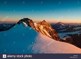 Resultado de imagen de pico dufour