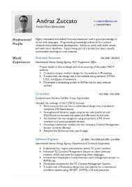 Front End Developer Resume Simple Andraz Zuccato CV Front End Developer