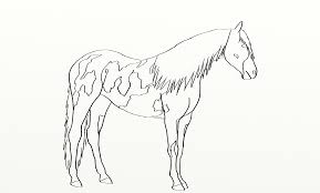 Small Picture Paint horse coloring pages