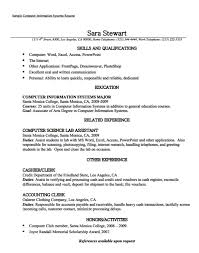Computer Clerk Sample Resume Unique Pin By Latifah On Example Resume CV Pinterest