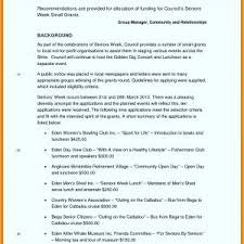 Business Trip Report Template Pdf Refrence 12 Business Trip Report ...