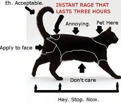 My Three Legged Cat Is Weird Petting Reaction Chart Imgur