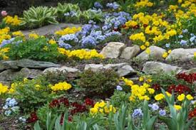 Small Picture About Rock Gardens HowStuffWorks