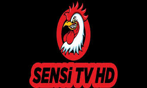 Sensi Tv Film HD 3.2 Son Sürüm – Apk İndir | Filme, Tips and tricks, Tricks