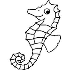 Small Picture seahorse coloring pages 2 Polyvore