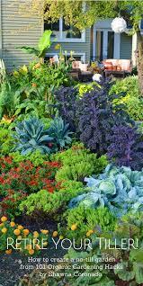 no till gardening create a no till