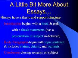 essay on democracy in america reliable essay writers that  essay on democracy in america jpg