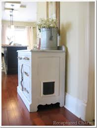 you ll never guess what s inside this cabinet, painted furniture,  repurposing upcycling, rustic furniture, A cat flap and vent were added