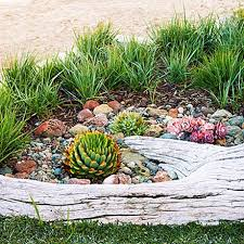 Small Picture Best Of Tips Outdoor Succulent Garden Design Great