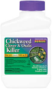 oxalis weed killer. Modren Weed Chickweed CLOVER U0026 OXALIS Killer Concentrate Contains Triclopyr MCPA And  Dicamba To Oxalis Weed K