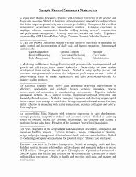 Sample Resume With Summary Resume Summary Statement Example Beautiful Resume Summary Statement 22