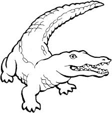 Small Picture Crocodile Coloring Pages Crocodile Coloring Page Free U Printable