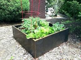 garden patch grow box reviews the grow box reviews garden grow boxes growing vegetables in steel planter beds garden patch grow