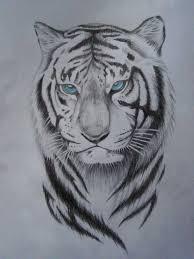 фото тигров татуировки