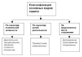 Реферат Ощущение восприятие память ru Отдельные виды памяти разделяются в соответствии с тремя основными критериями