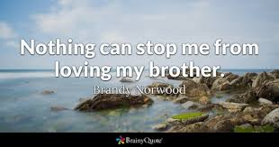 Brotherly Love Quotes Inspiration Brother Quotes BrainyQuote