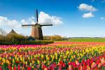 Netherlands Vacation...