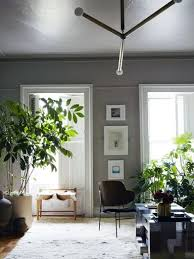 a moroccan rug adds warmth to a matte grey bedroom large plants accent the space