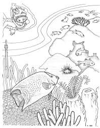 Small Picture 7 best Coral reef coloring pages images on Pinterest Ocean
